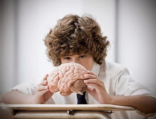 Así afecta el estilo de crianza en el cerebro de nuestros niños